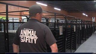 Inside look at temporary animal shelter