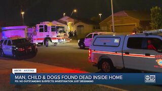 Police investigating after child, man and 2 dogs found dead inside Mesa home