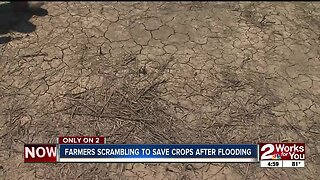 Farmers scrambling to save crops after flooding