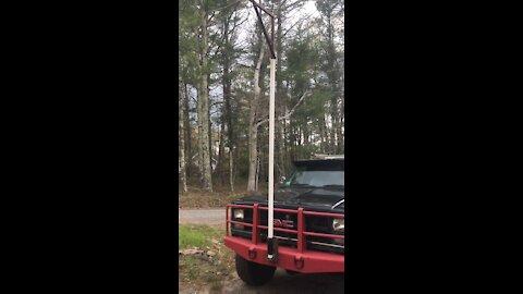 Hitch mount deer hoist