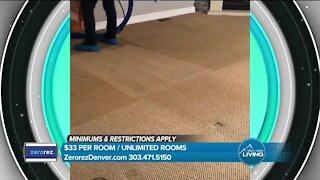 Powered Water Carpet Cleaning // Zerorez