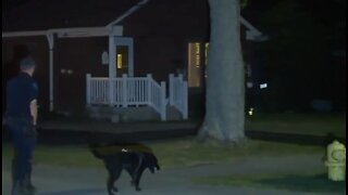 Human skull found in backyard of Trenton home