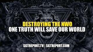 DESTROYING THE NWO: ONE TRUTH WILL SAVE OUR WORLD