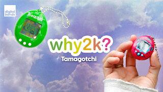 Why2k?   Tamagotchi