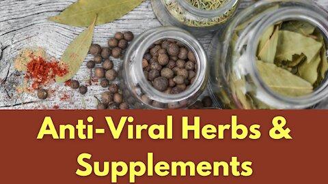 Anti-Viral Herbs & Supplements