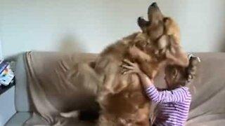 Ce chien a passé le test de la confiance