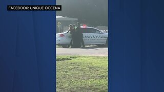 Polk deputy punches handcuffed suspect twice in cell phone video