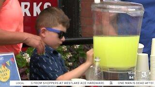 Community lemonade stands aid local organizations