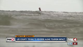 Lee County trying to reverse algae tourism impact