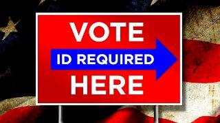 Media Goes BERSERK Over State Voter Integrity Laws