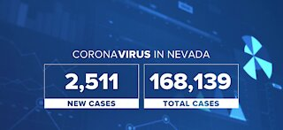Cases within the last 24 hours