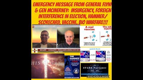 Emergency Message from Gen Flynn & Gen McInerney