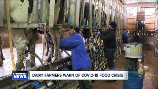 Dairy farmers warn of covid-19 food crisis