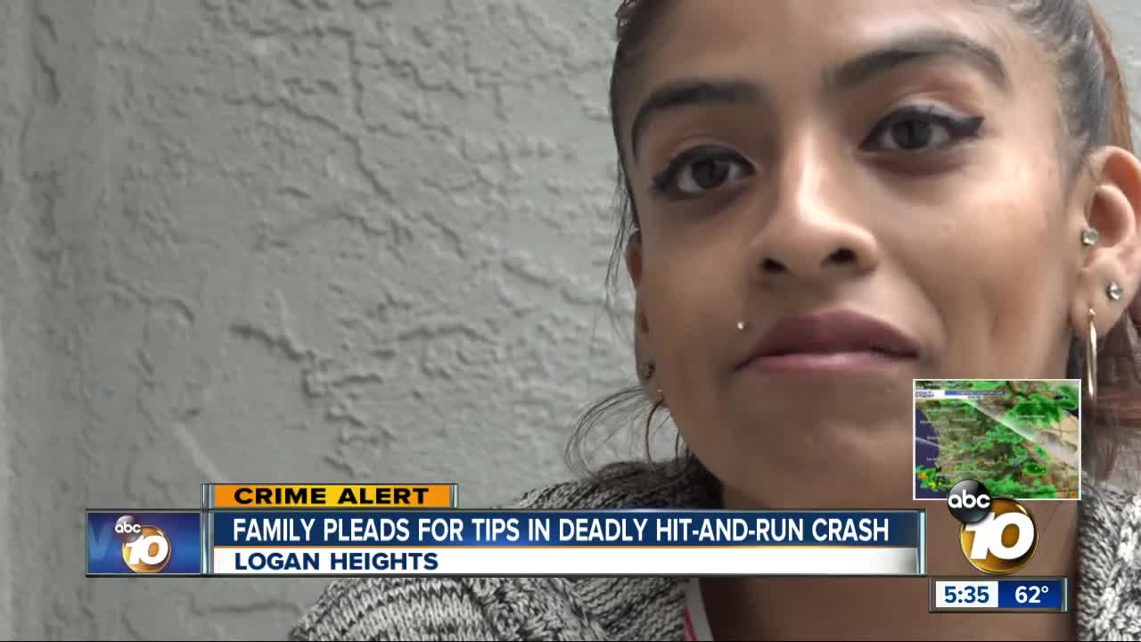 Family pleads for tips in deadly hit-and-run crash