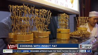 Cooking with insect fat