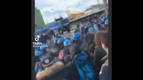 Italians Fighting in the Streets!