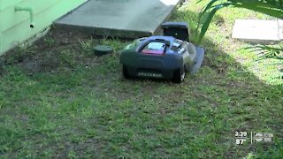 Couple launches business with robotic lawn mower