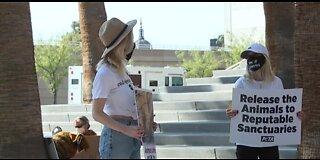 PETA protest today in Las Vegas