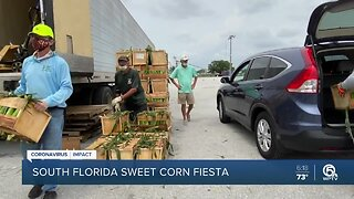 South Florida Sweet Corn Fiesta turns into drive-through event