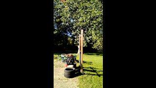Outdoor Front squat 255x5