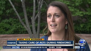 Taking care of pets during fireworks