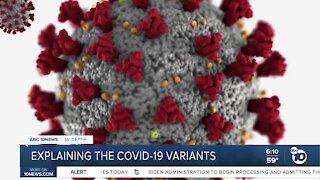 In-Depth: Breaking down the COVID-19 variants