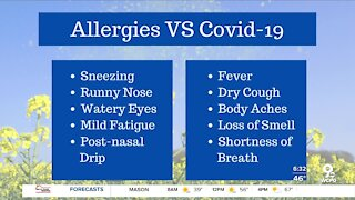 COVID-19 or seasonal allergies? What doctors want you to know