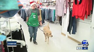 Arc Thrift Store ambassador for December