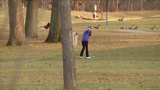 Golf Course CV Impact