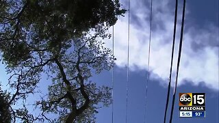 Power outages in California: Could it happen here in Arizona?