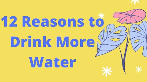 12 Reasons to Drink More Water