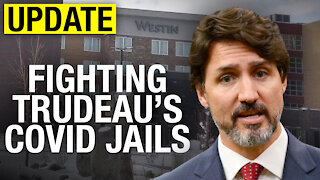UPDATE: Day 3 of Rebel News legal challenge against COVID jails