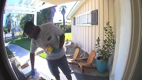 USPS Driver's Priceless Reaction To Snacks Left by Homeowner
