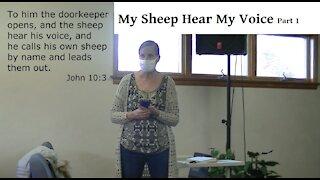 My Sheep Hear My Voice Part 1