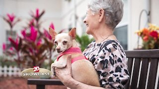 TV20 Showcase: Retirement living information from Brookdale