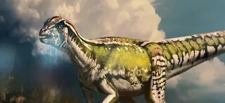 Nevada's first unique dinosaur discovery unveiled in Henderson