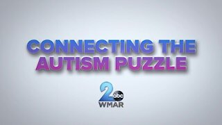 Connecting the Autism Puzzle