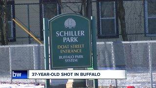 Shooting in Buffalo early Sunday morning