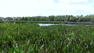 Green Cay Nature Center set for expansion
