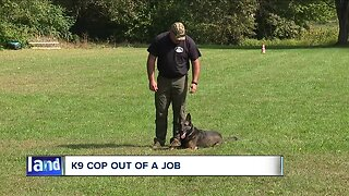 Confusion over cannabis, Lake County K9 forced into retirement