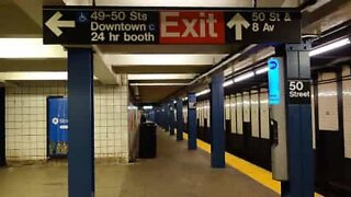 Mouse shows perseverance on New York subway