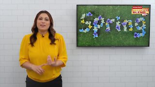 Spring Refresh with Limor Suss | Morning Blend