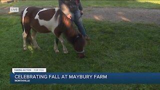Celebrating Fall At Maybury Farm