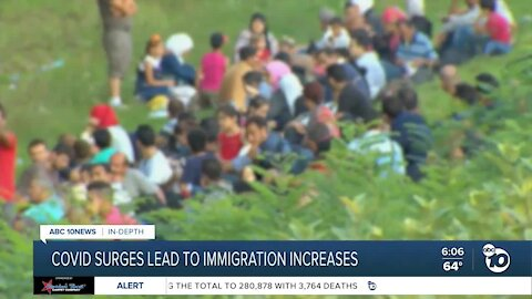 In-Depth: Do COVID surges lead to immigration increases?