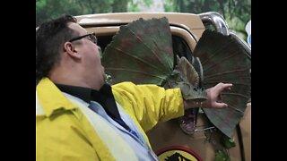 JURASSIC ARIZONA! Dinos found in our state - ABC15 Digital
