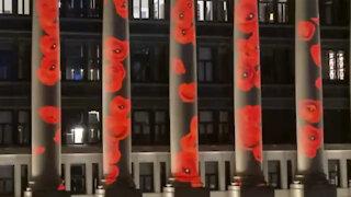 poppy display ottawa
