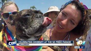 Celebrating Diversity at the SD Pride Parade