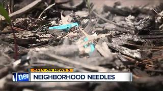 Thousands of needles found in Fairview Park