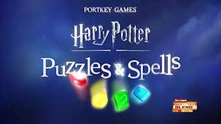 Zayn Malik Teams Up with Harry Potter: Puzzles & Spells