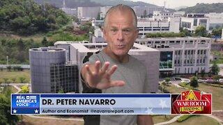 Navarro Warns Border Crisis Bringing More Strains of CCP Virus